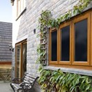 Oak profile Windows